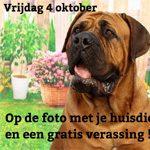 Vrijdag 4 oktober Dierendag
