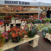 Bloemenhandel William Broekhof